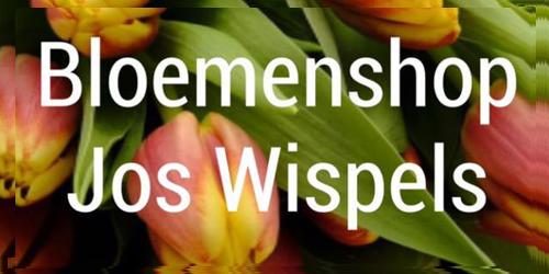 Bloemenshop Wispels